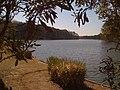 Martin Lake - panoramio.jpg