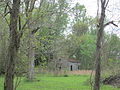Mary Plantation Cabin 1.JPG