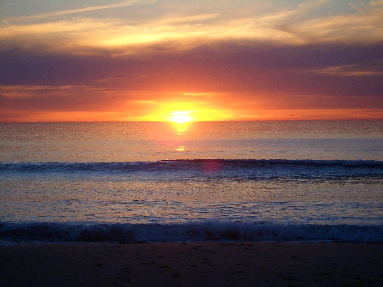 Sole Myrtle Beach