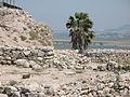 Megiddo 0664 (520316409).jpg