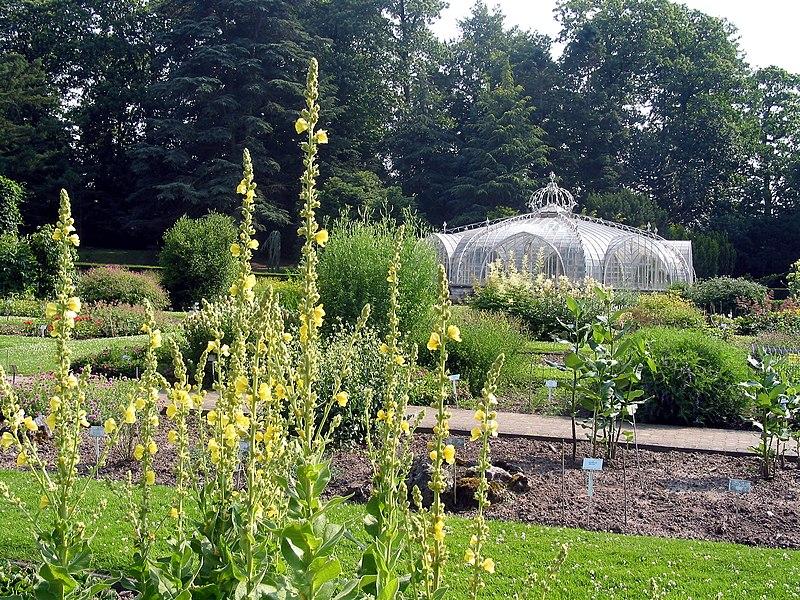 Meise   (Belgium), National Garden of Belgium - Balat Greenhouse (1854).