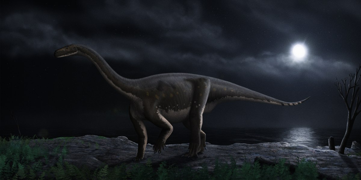 Melanorosaurus - Wikipedia