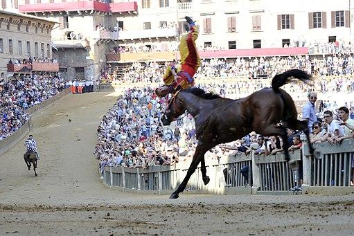 La caduta di Antonio Villella detto Sgaibarre dal cavallo Messi, Quarta prova del Palio di Siena 2011