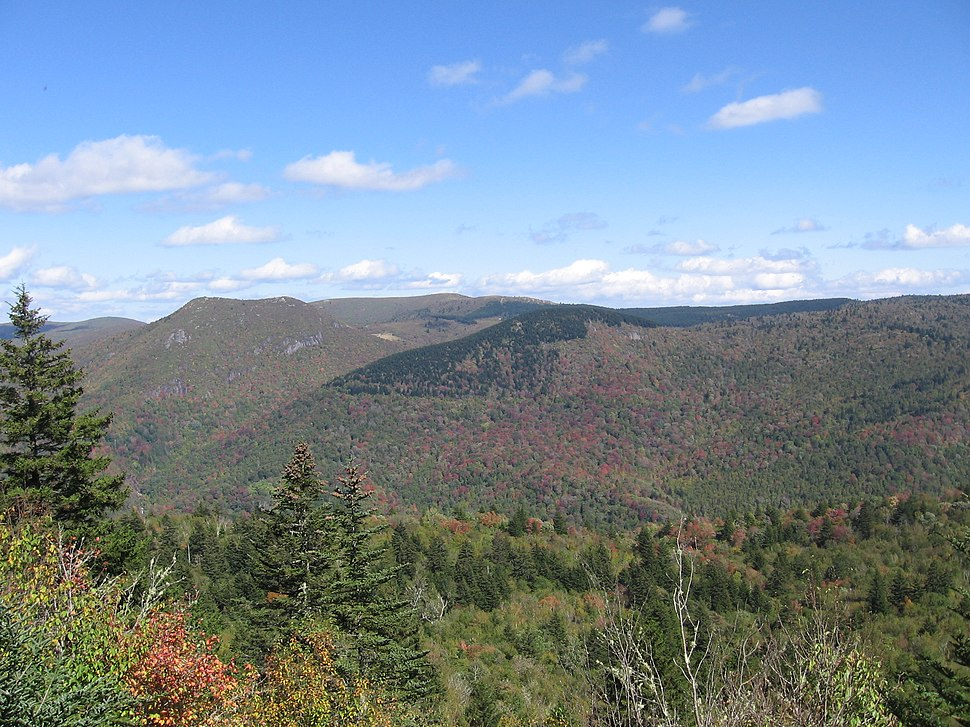Middle Prong Wilderness in North Carolina
