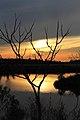 Middletown - panoramio (23).jpg