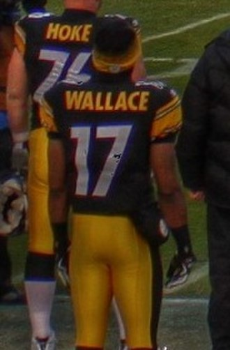 Mike Wallace (American football) - Wallace in 2009