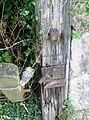 Mill Road level crossing gate, lock detail, Kilbirnie.JPG