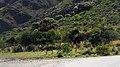 Mirador del Águila - panoramio.jpg