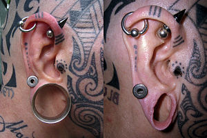 Body modification - Image: Modified ear