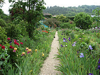 Monet's Garden at Giverny.jpg