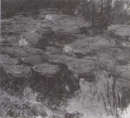 Monet - Wildenstein 1996, 1806.png
