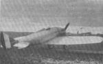Monoplano Piaggio P.2.png