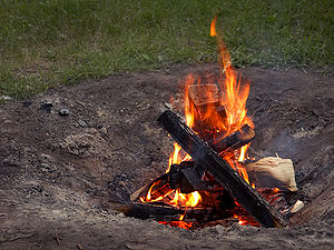 Campfire - A small fire in a backyard fire pit.