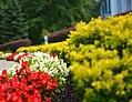 Mooreland Mansion Flowers (9459337209).jpg