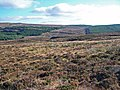 Moorland towards the forests - geograph.org.uk - 1539364.jpg