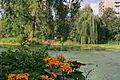 Moscow BotanicalGarden 2639.jpg