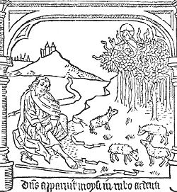 Moses Taking Off His Shoes In Front Of The Burning Bush Illustration From A 16th Century Edition Speculum Humanae Salvationis