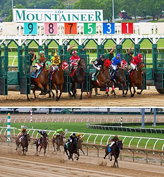Mountaineer Casino, Racetrack and Resort - The start and stretch run on a sloppy main (dirt) track at the Mountaineer Park racetrack.