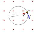 Movimento de uma partícula com carga negativa dentro de um campo magnético uniforme, apontando para dentro da folha..png