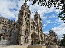 Londono gamtos istorijos muziejus