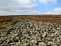 Mutiny Stones, Byrecleugh Ridge - geograph.org.uk - 375401.jpg