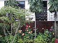 My final Garden.jpg