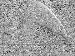 NASA-Mars-$tarTrekFleetLogo-20190612.jpg