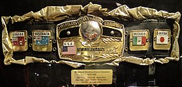 NWA World Heavyweight Championship belt 2012.jpg