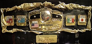 NWA Worlds Heavyweight Championship Professional wrestling championship