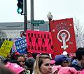 NWomen's March 1337 (32492629325).jpg