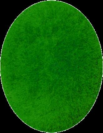 16th Alpini Regiment - Image: Nappina verde