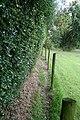 Narrow footpath near Adder's Moss - geograph.org.uk - 1600625.jpg