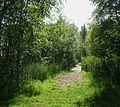 Nationaal Park De Alde Feanen. Locatie, It Wikelslân 0014.jpg
