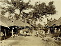 Native Bazaar at Alipore near Calcutta (Kolkata) - 1868.jpg
