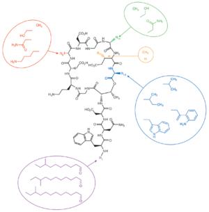 Daptomycin - Image: Nbt 1265 F3