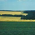 Near the village of Recea (1980). (14205357819).jpg