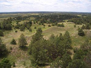 Nebraska - Nebraska National Forest