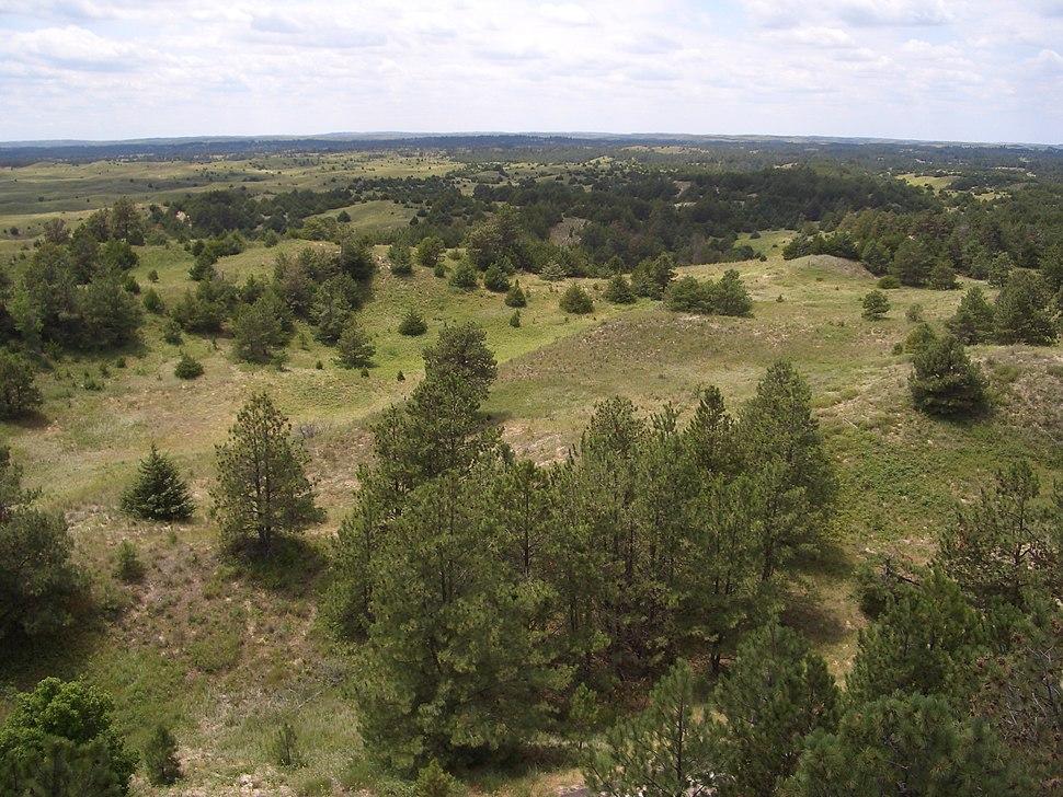 Nebraska National Forest, Bessey Ranger District, no. 1
