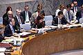 New York, Consejo de Seguridad de las Naciones Unidas (9451160681).jpg