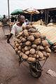 Nigeria yam1.jpg