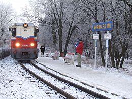 布达佩斯儿童铁路