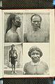 Nova Guinea - Vol 7 - Ethnographie - 1913 - Tafel 51.jpg
