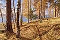 October In Vozdvizensky Forrest.jpg