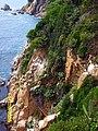 Ogród botaniczny Blanes - panoramio (2).jpg