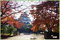 OkIMGP6265Hikone Castle.jpg