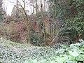 Old Quarry - geograph.org.uk - 376339.jpg