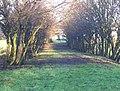Old Road to Burntbroom - geograph.org.uk - 1473168.jpg