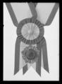 Ordenstecken, II klass av kinesiska Mångfärgade Jadeorden - Livrustkammaren - 78550.tif