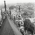 Overzicht van de geveltop van het noordtransept - 's-Hertogenbosch - 20425379 - RCE.jpg