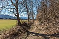 Pörtschach Winklern Quellweg Wanderweg 18022020 8346.jpg